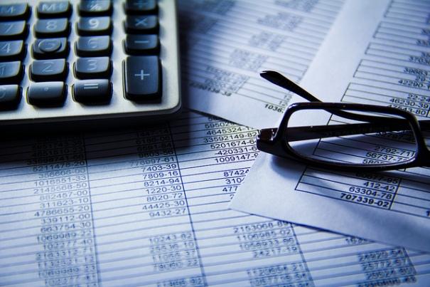 sistema presupuestario
